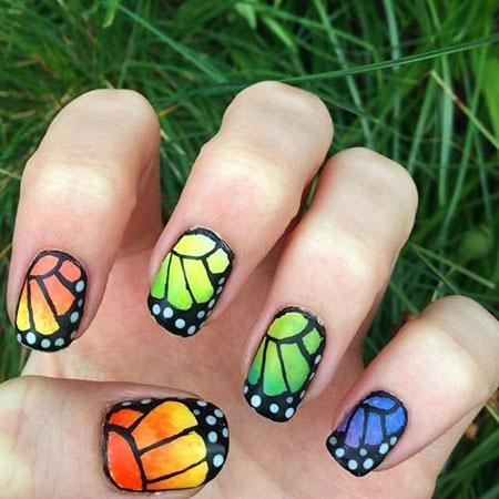 Butterfly Monarch But Summer